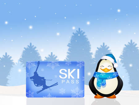 penguin with skipass