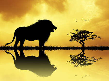 lake sunset: lion silhouette on river at sunset