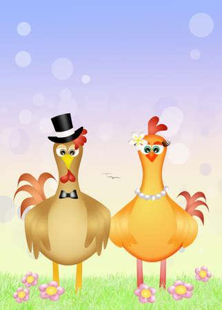 pollitos: Esposos de gallo y gallina