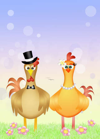 rooster and hen spouses Stock Photo