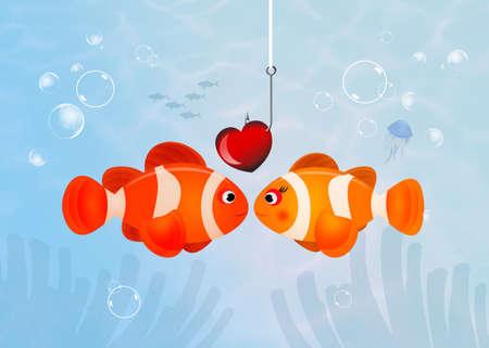 clownfish in love