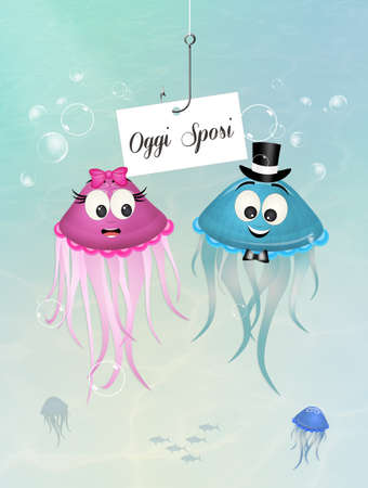 coupling: jellyfish spouses