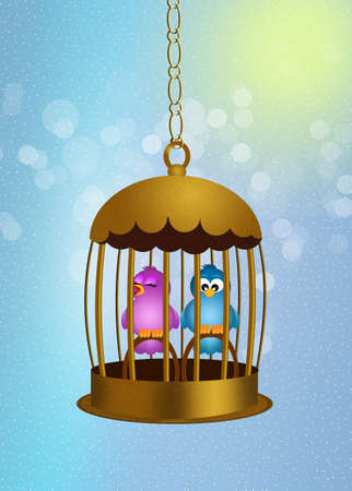 cage birds: birds in the cage Stock Photo