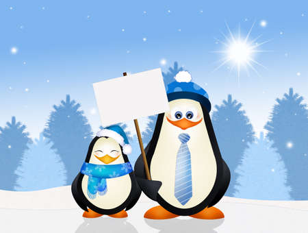 funny penguins in winter