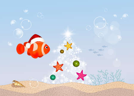 clown fish at Christmas