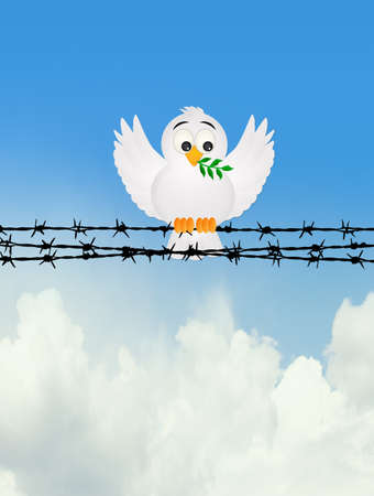dove with olive tree on the barbed wire Imagens