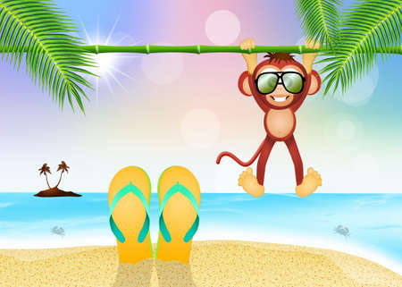 flip flops and monkey on the beach