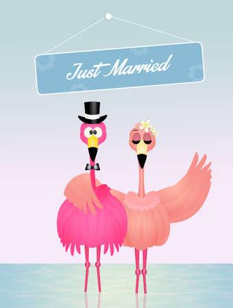 Wedding of pink flamingos Stock Photo