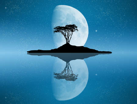 tree reflected in the moonlight Stock Photo