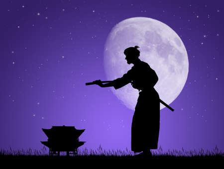 Aikido in the moonlight