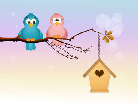 coupling: birds in love and birdhouse Stock Photo