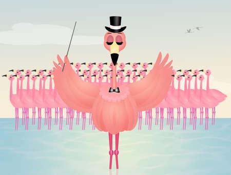coupling: dance love flamingos