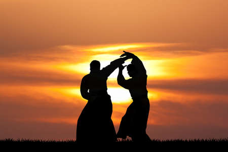 Illustration of aikido demonstration at sunset Stock Photo