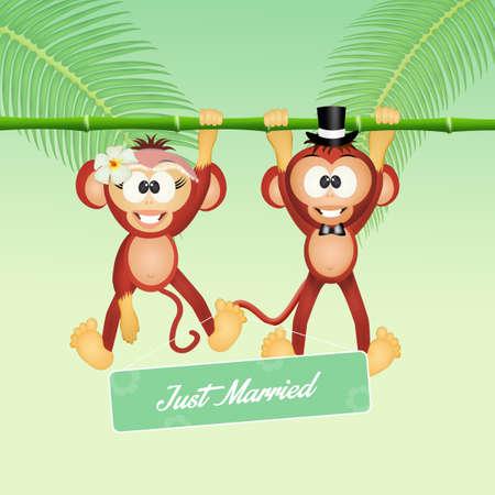 coupling: Wedding of monkeys