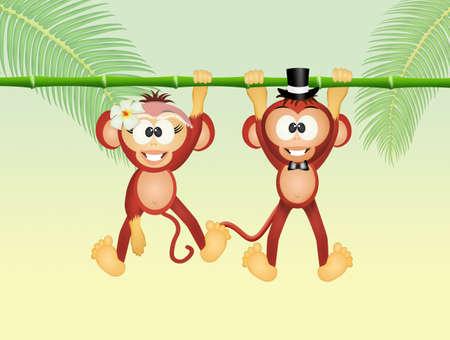 coupling: monkeys in love