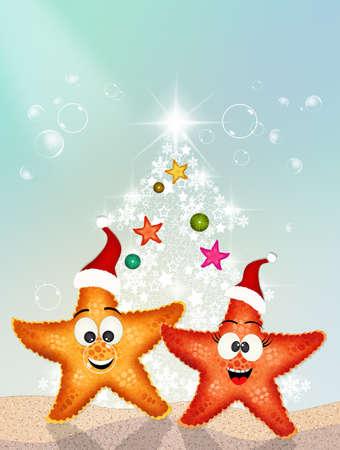 starfish at Christmas