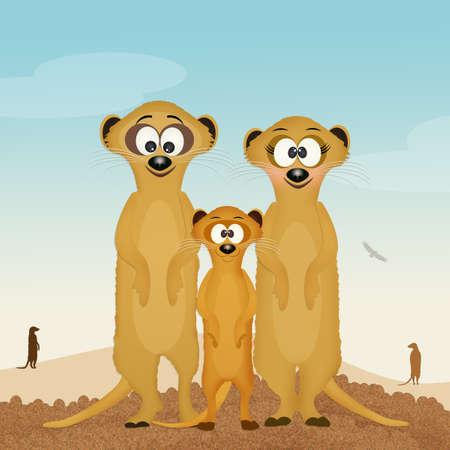 mongoose: meerkats family in the desert