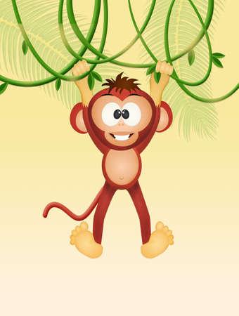 monkey on liana