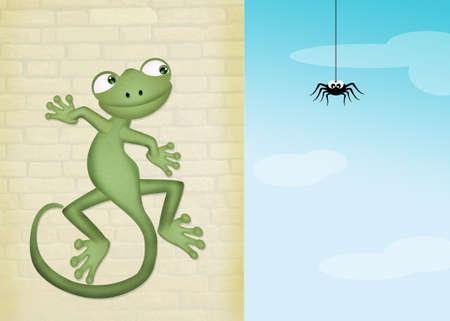 Gecko et araignée Banque d'images - 78186937