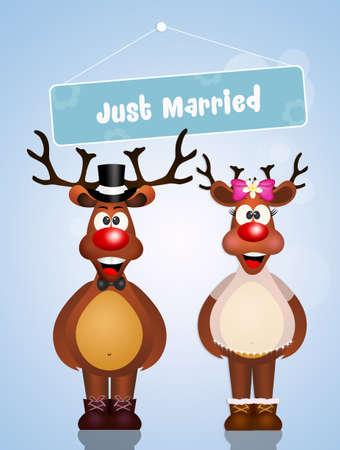 coupling: reindeer spouses