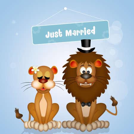 Wedding of lions