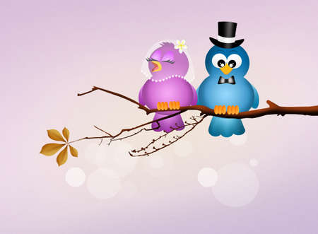 augury: birds in love