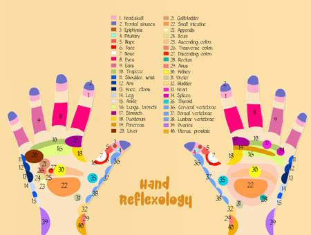 Grafico riflessologia della mano Archivio Fotografico - 78626846