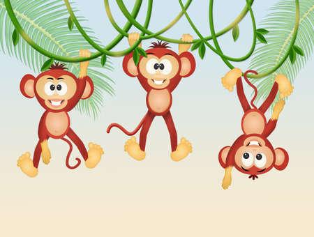 monkeys on lianas in the jungle Stock Photo