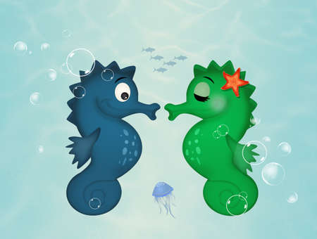 two seahorses on the seabed