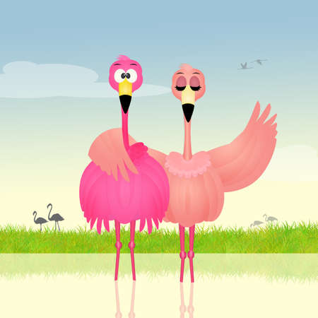 two pink flamingos in love Stock Photo