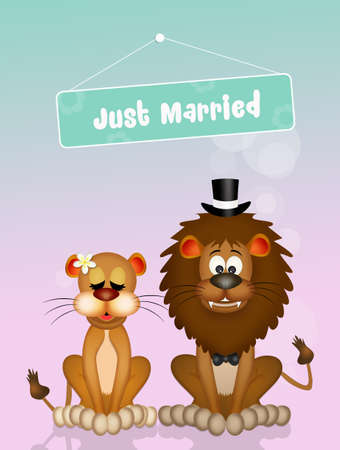 Wedding of lions
