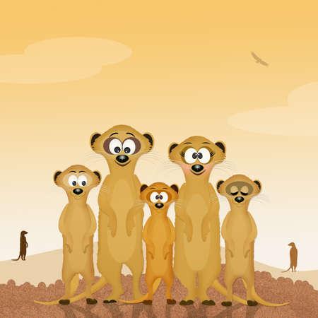 Familia de suricatos Foto de archivo - 83135896