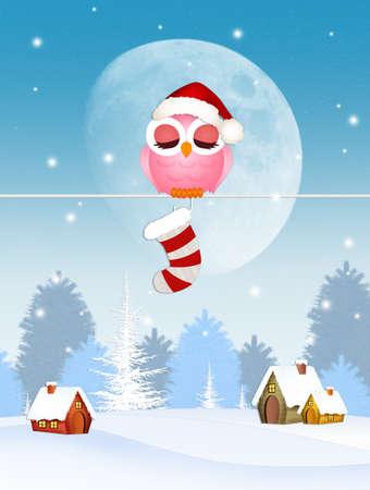 Uil met kerst sok