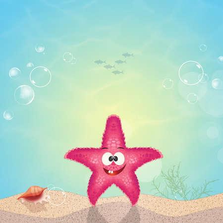 starfish on seabed