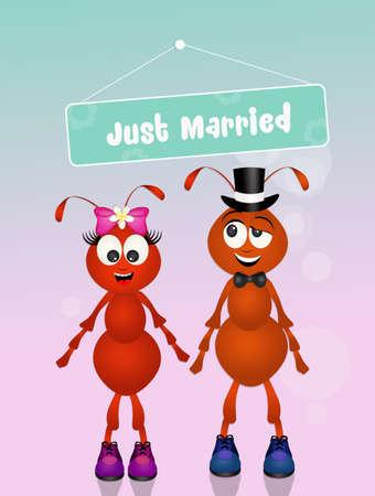 coupling: Wedding of ants Stock Photo