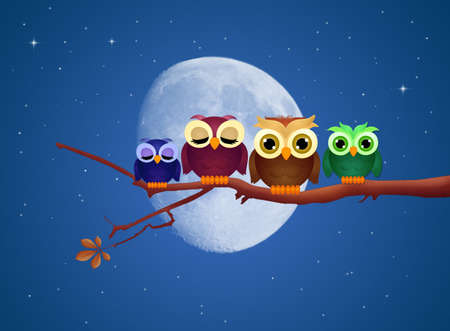 family of owls on branches