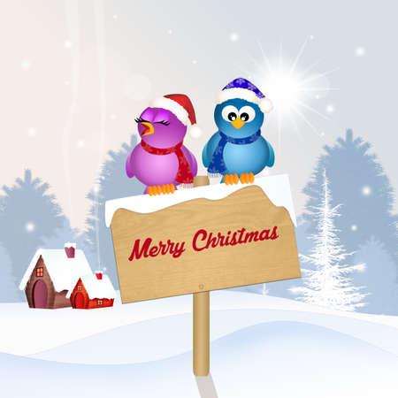 birds at Christmas Stock Photo