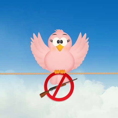bird with no hunting prohibition