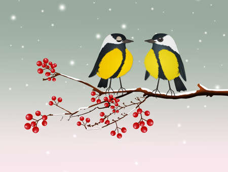 blue tits bird on tree at Christmas