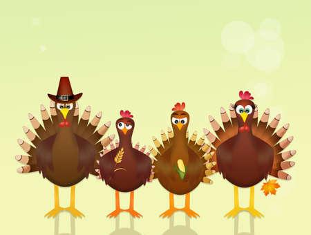 funny turkeys