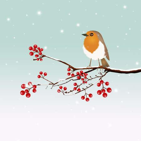 little robin on tree Stock Photo