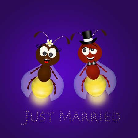 Marriage of fireflies Stock Photo