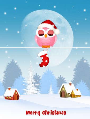 Kerst ansichtkaart met uil en sok