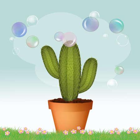 soap bubbles on cactus plant