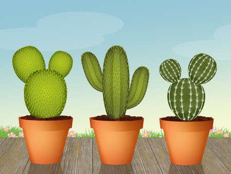 illustration of succulents Stock Photo