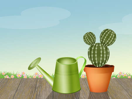 cactus and watering can