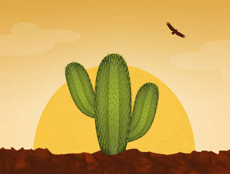 日没時の砂漠のサボテン