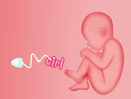 illustration of announcement of baby female