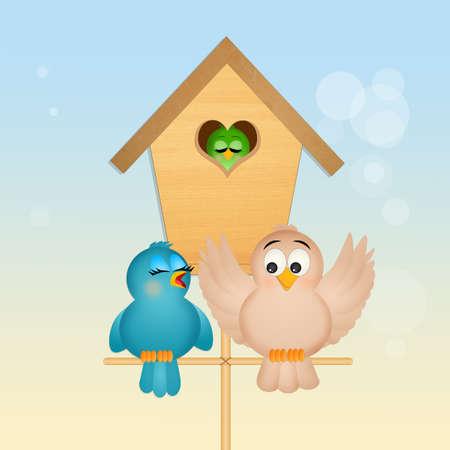 family of birds Standard-Bild