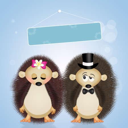 El matrimonio de los erizos Foto de archivo - 93051188